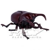 Escarabajo Ciervo Juguete Insectos Rojo Niños Educativo