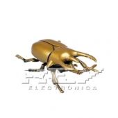 Escarabajo Rinoceronte Juguete Insectos Color Dorado