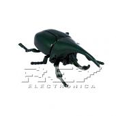 Escarabajo Rinoceronte Juguete Insecto Verde Niños